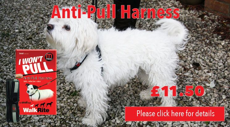 Anti Pull Harness